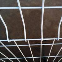 China Curved welded wire fence on sale