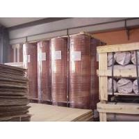 China Protective Mesh Welded Wire Mesh on sale