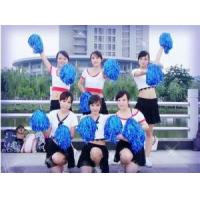 Best Cheerleader Pom Pom Set with 2pcs for Sports wholesale