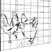 Best Drivall Poultry Electric Fencing Kit CategoryElectric Fencing wholesale