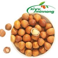 Best Hazelnuts Nuts in Shell Salted and Roasted Organic Bulk for Sale with Low Price wholesale