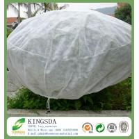 Best Agricultural Use Polypropylene Non Woven Weed Control Fabric wholesale