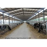 Best Prefabricated Steel Structure Cow Cattle Farm House wholesale