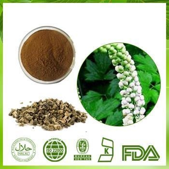 Cheap Black Cohosh Extract for sale