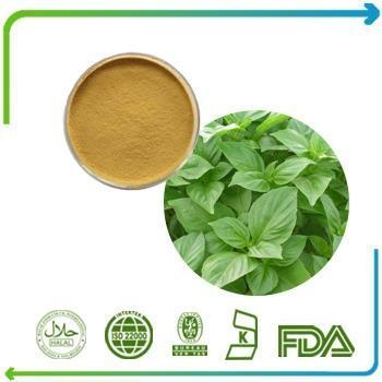 Cheap Holy Basil Leaf Extract for sale