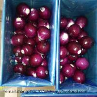 China Big Red Onions on sale