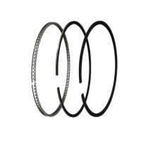 Piston Ring for Multi-cylinder Engine name: Hippocampus 479Q