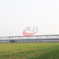 Best Agriculture Plastic Large Multi Span Greenhouse for Sale wholesale