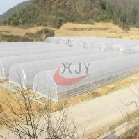 Best Agricultural Single Span Plastic Film Greenhouse wholesale