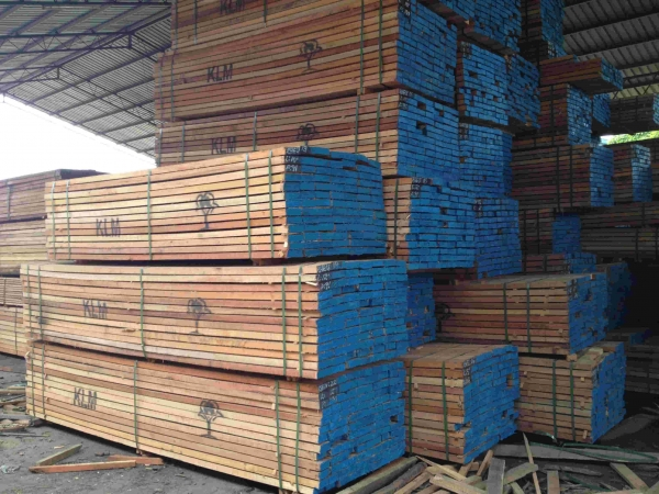 China Mix Hardwood - 1